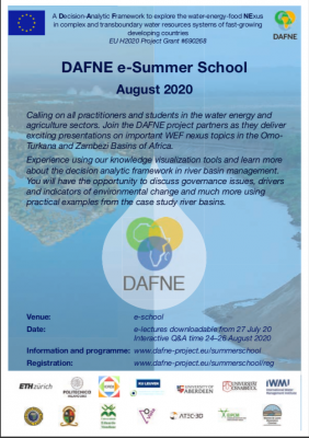 DAFNE e-Summer School August 2020